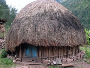 Honai_Papua